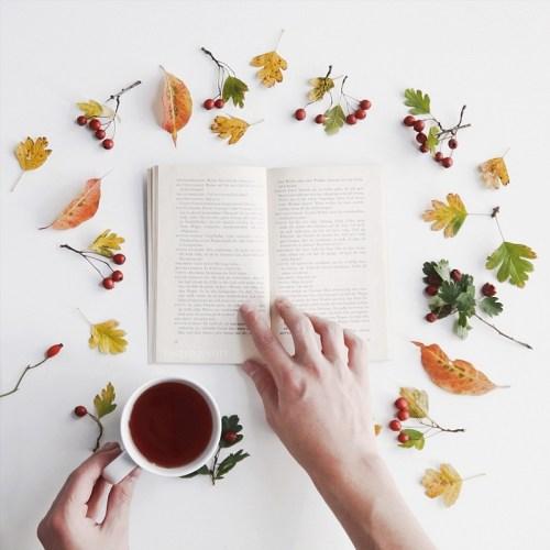 Herbstliches Flatlay mit Buch, Blättern und Tee. Tasteboykott.