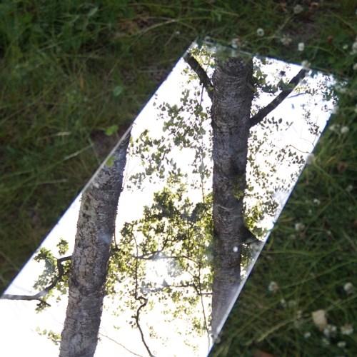 Spiegel draußen in der Natur Fotografie Kunst