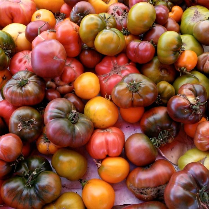 Tomato, Mozzarella and Basil – a Holy Trinity