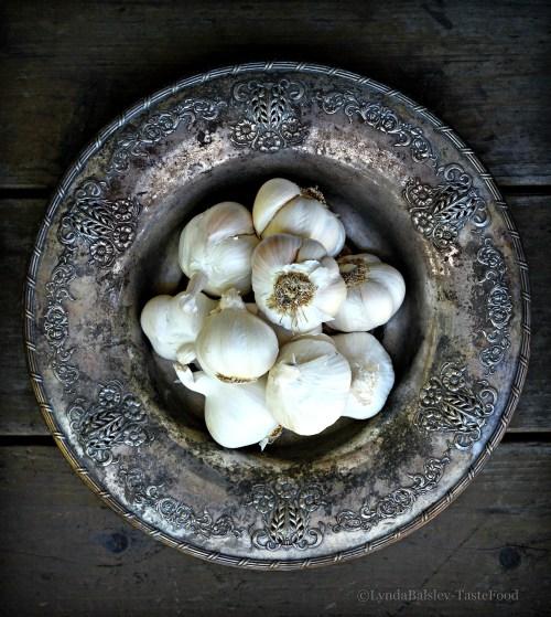 garlic 111