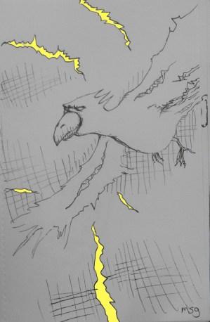 The lightning bird