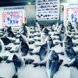 Athens Central Market Fish