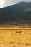 Ngorongoro Crater, Tanzania 2012© Credit: Krystal M. Hauserman @MsTravelicious