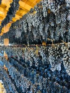 Winery Ojuel, Rioja, Spain 2020 © Credit: Krystal M. Hauserman @MsTravelicious