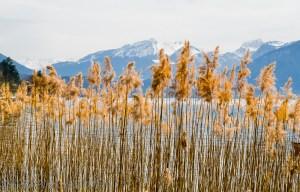 Lac Annecy, Annecy, Haute Savoie