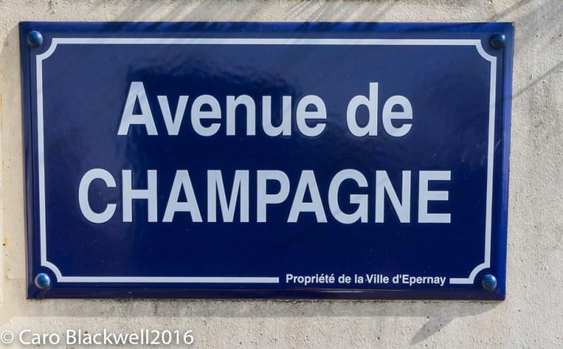 Avenue de Champagne in Epernay