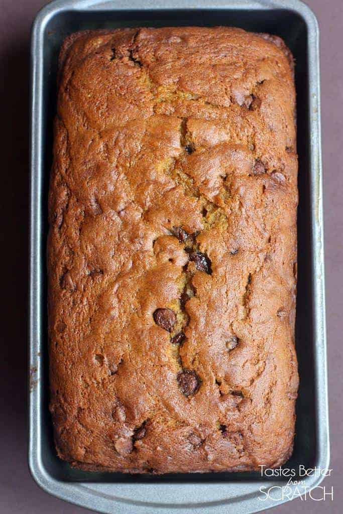 Pumpkin Chocolate Chip Bread | - Tastes Better From Scratch