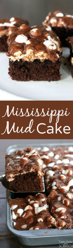 Mississippi Mud Cake | - Tastes Better From Scratch