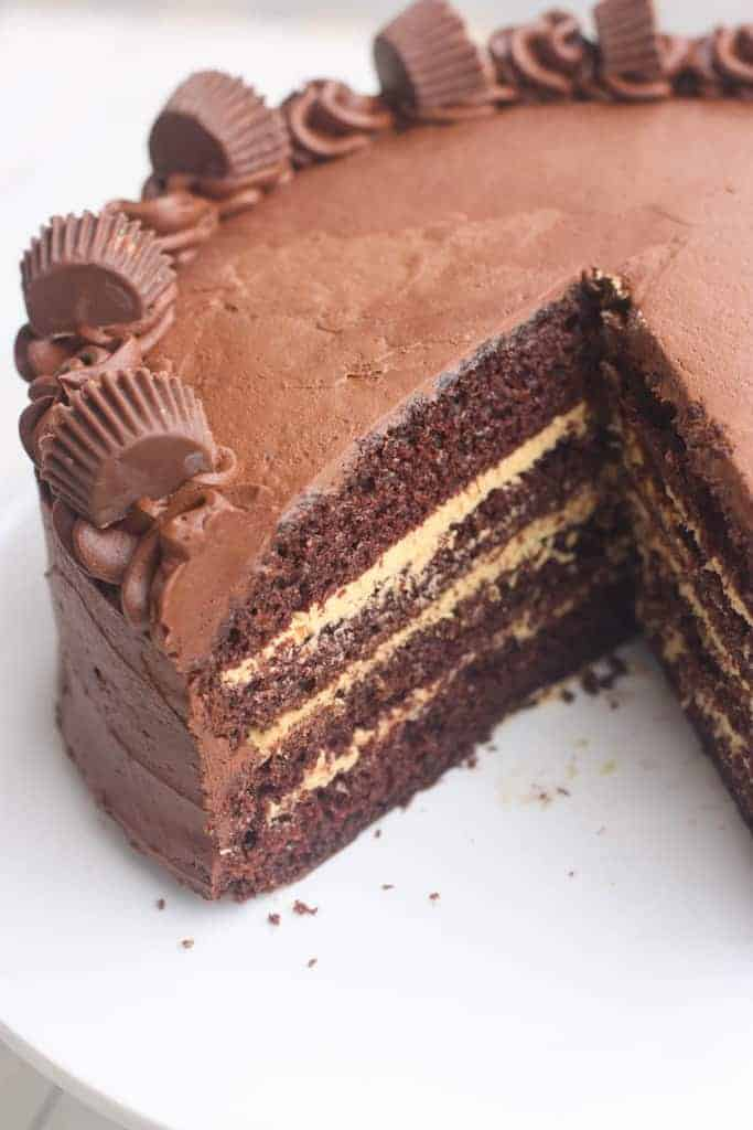chocolate cake taste essay An excellent chocolate fudge birthday cake instructions preheat the oven to 350°f lightly grease and flour (or grease, then line with parchment, then grease again) two 8 x 2 round cake pans.