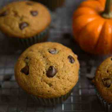 7 pumpkin chocolate chip muffins on a cooling rack next to a bright orange miniature pumpkin and scattered chocolate chips