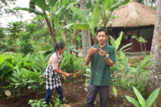 Rundvisning på gården. Ubud, Bali. Kokkeskole. (c) Per Sommer