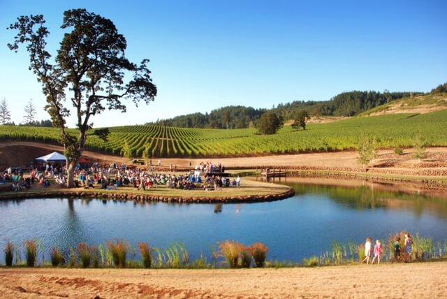 eola-hills-legacy-vineyard-lake