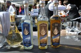 azunia tequila