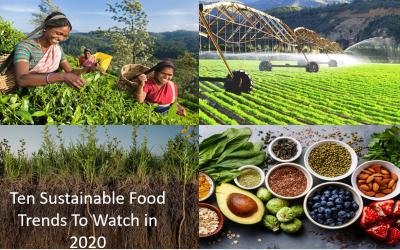 Sustainable Food Trends in 2020: Ten to Watch
