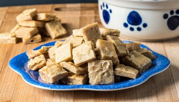 Healthy homemade dog food tasty low carb homemade fishy dog treats salmon and tuna forumfinder Image collections