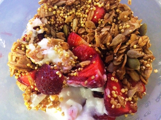 granola and yogurt2