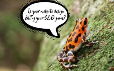 How to Avoid 6 Common Web Design Mistakes That Hurt SEO