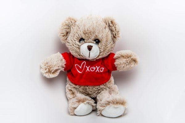 Coco Bear soft toy