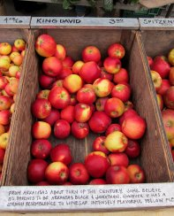 sf_farmers_market110