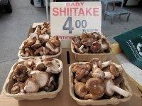 sf_farmers_market130