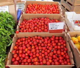 sf_farmers_market51