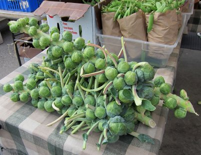 sf_farmers_market83