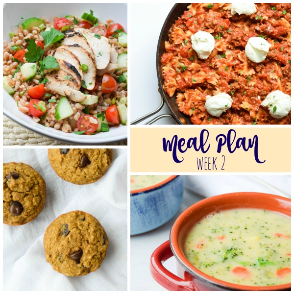 tasty thin meal plan