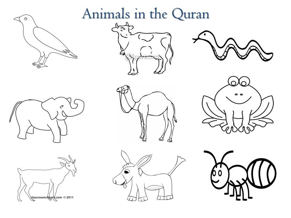 Animals in Quran (2/6)
