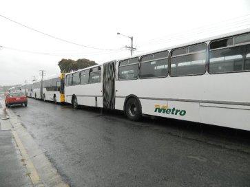 Buses parked outside Bellerive Oval