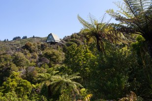 NZ_2015.12.21 Queen Charlotte Track-7996