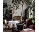 Axel-Vervoodt-orangerie-dining-table-potted-tree-gardenista-760x760