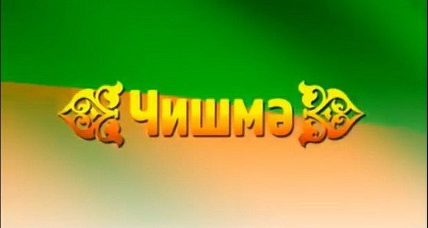 "Ульяновск губернаторы ""Чишмә"" тапшыруы коллективын котлады"