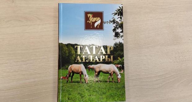 Василь Шайхразиев: «Каждый татарин, имеющий такую возможность, держал коня»