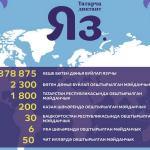 Быел «Татарча диктант» акциясендә 370 меңнән артык кеше катнашты!