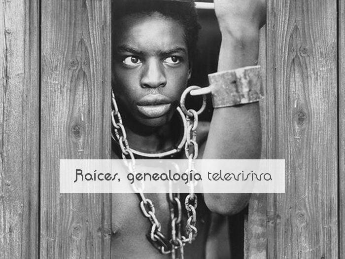 Raíces, genealogía televisiva
