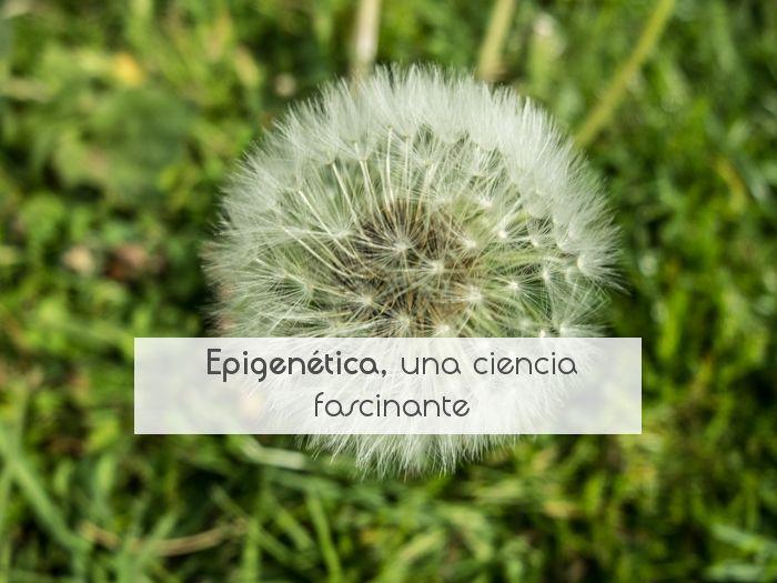 Epigenética, una ciencia fascinante