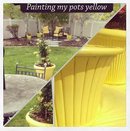 painting my pots yellow