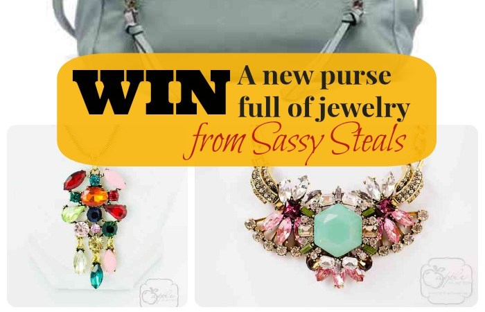 Win a New Purse and Fabulous Jewelry (Over $100 Value)!