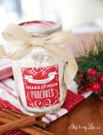 HAPPY Holidays: Cinnamon Shake & Pour Pancakes in a Jar (Gift Idea)
