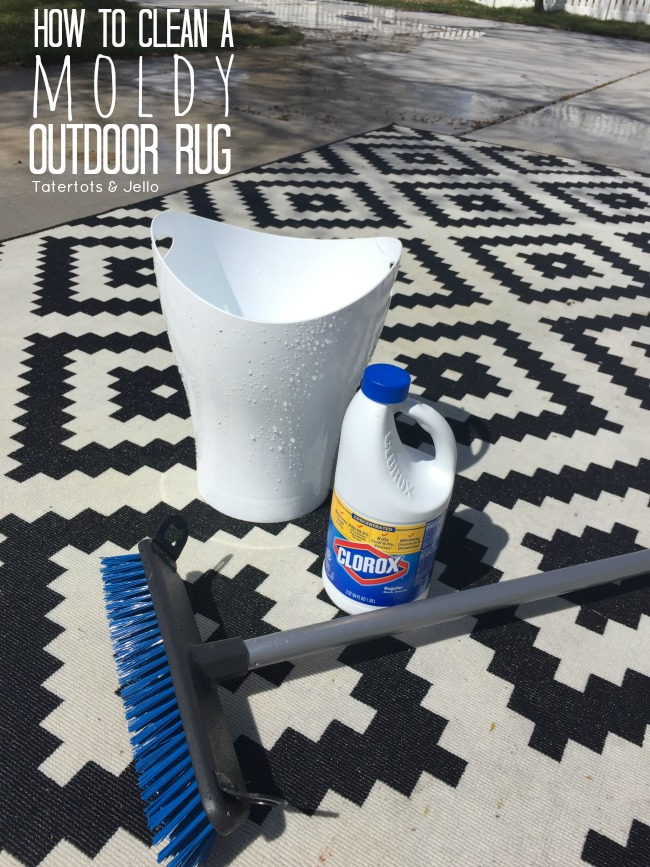 how to clean a moldy indoor outdoor rug