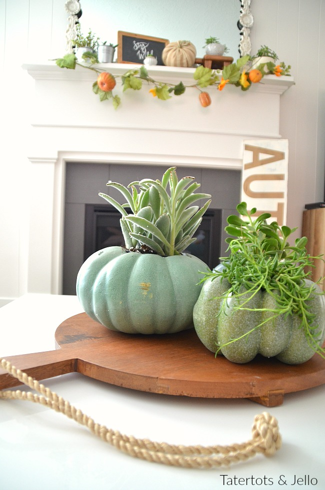pumpkin planter centerpiece
