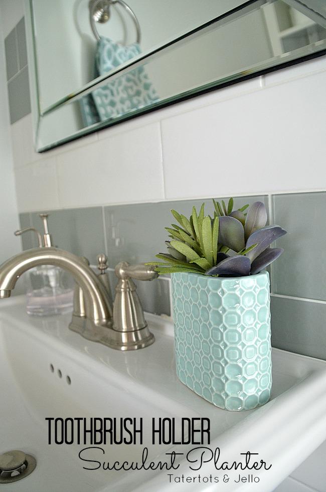 toothbrush holder succulent holder