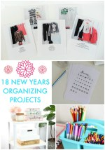 Great Ideas — 18 New Years Organizing Projects!