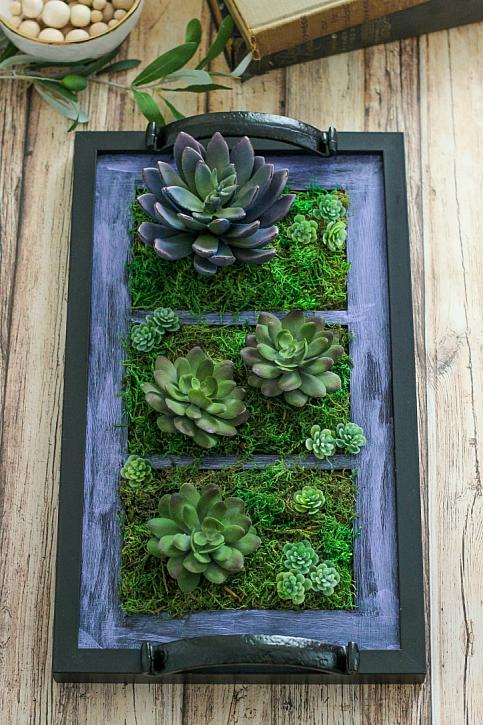 Great ideas 17 diy outdoor projects for Tray garden designs
