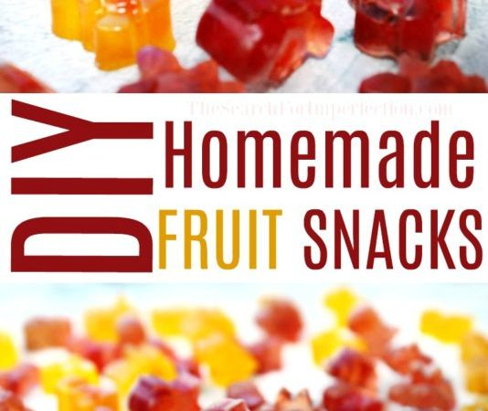 4 Ingredient DIY Fruit Snack Recipe