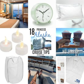 18 Princess Alaska Cruise Secrets!