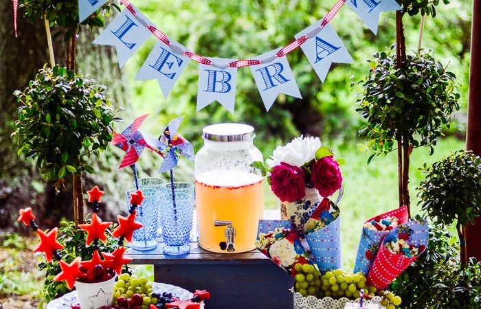 12 RED WHITE and BLUE Fourth of July Ideas!