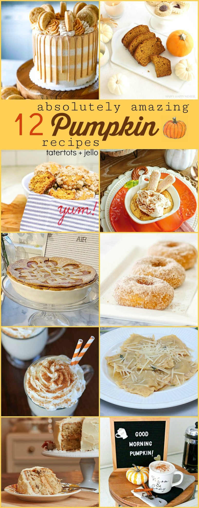 12 Absolutely Amazing Pumpkin Recipes. All of the BEST Pumpkin recipes all in one spot! Check out these pumpkin recipes and make something special to celebrate FALL!