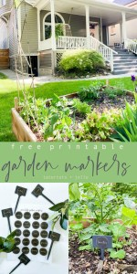 Printable Garden Plant Markers