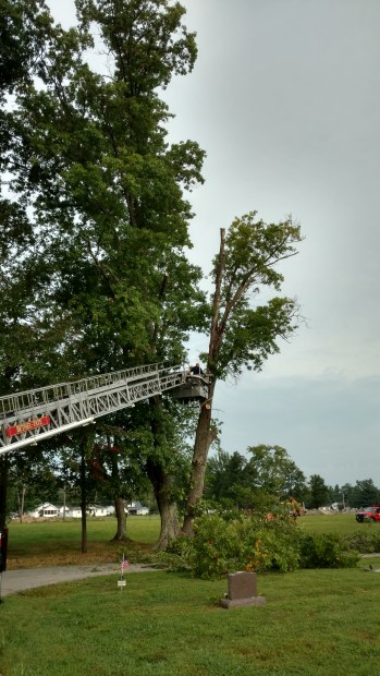 2017 Cemetery Tree Removal